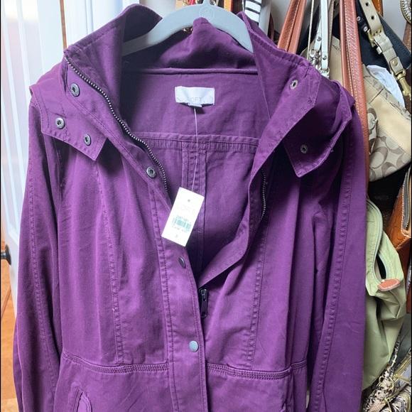 LOFT Jackets & Blazers - Jacket